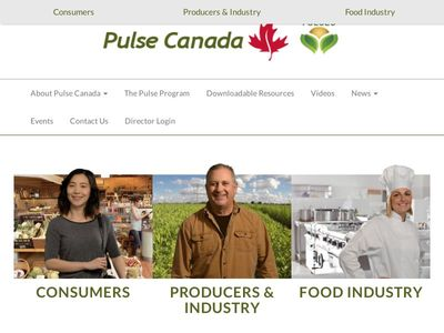 Belle Pulses Ltd