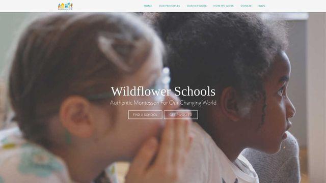 Wildflower Schools