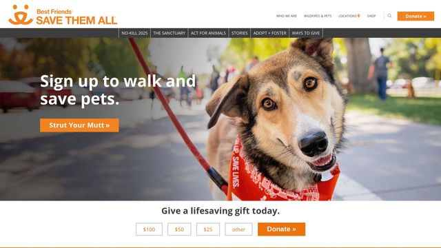 First Coast No More Homeless Pets, Inc.