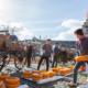 Gouda Kaasmarkt Web