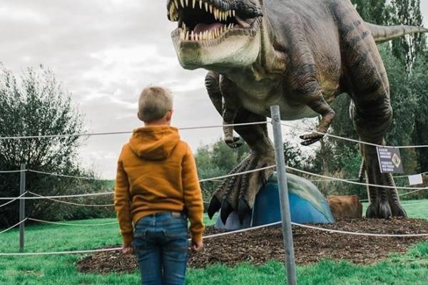 Dino Experience Park trex byhearts