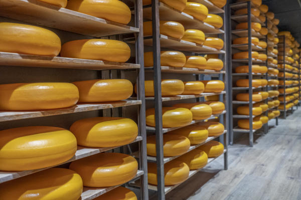 Cheese Experience Jan 2020 2282