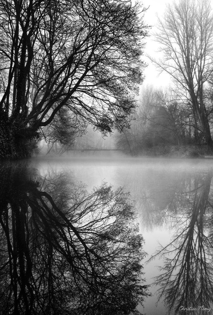Morgendlicher Nebel über der Oker