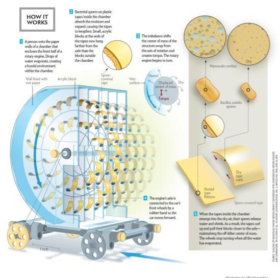 evaporation engine