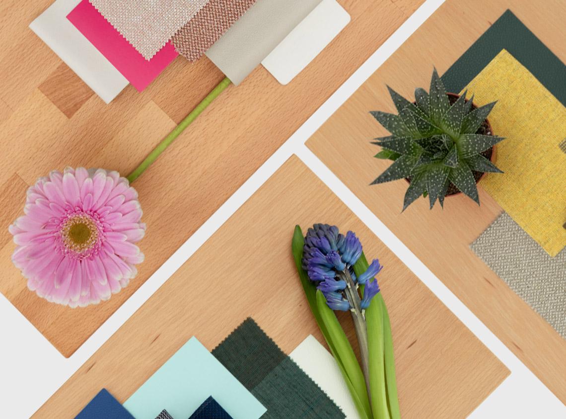 Holz Farbe 4 Buche Frohraum Buche Und Farbe
