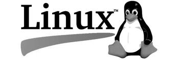 Software development Linux