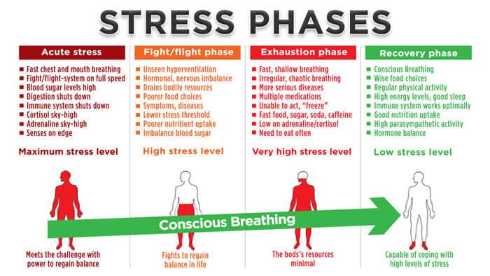 pijn en fasen stress