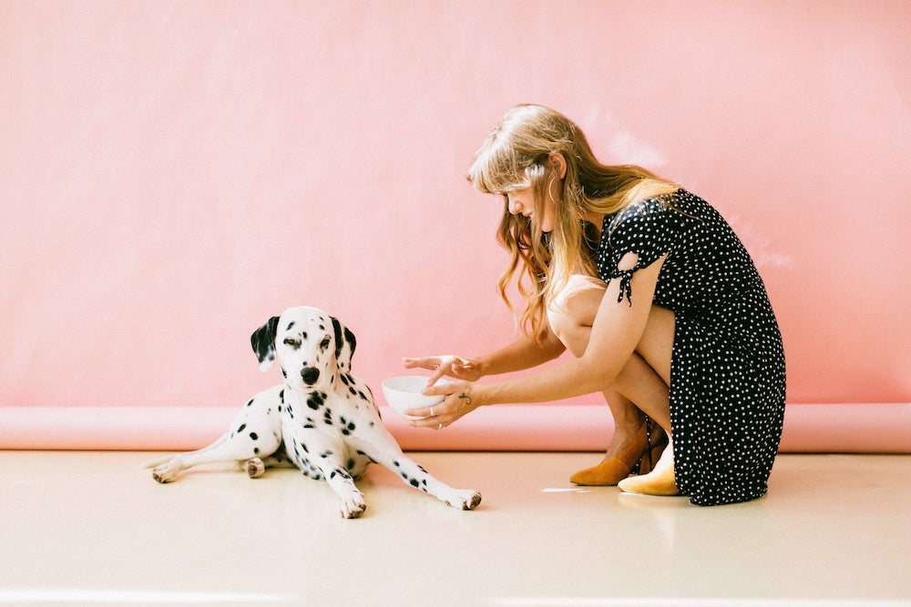 prendersi cura del proprio cane