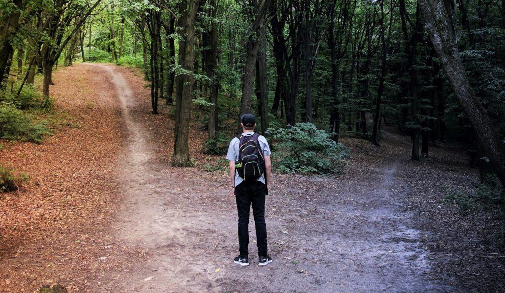 ragazzo di fronte a un bivio nel bosco