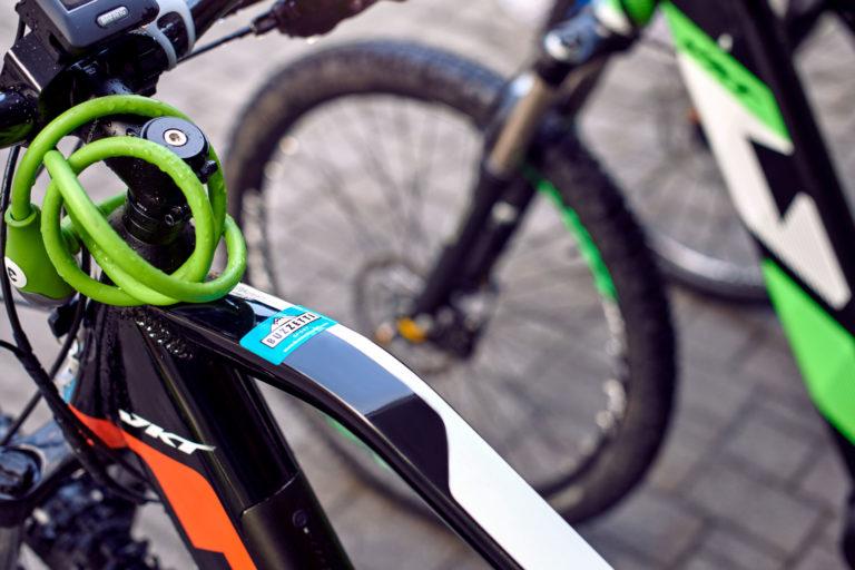 Buzzetti-Sport_027_Noleggio-Bici
