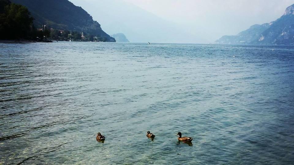 Onno beach, Oliveto Lario