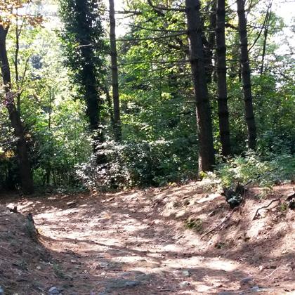 Spina Verde Park Como