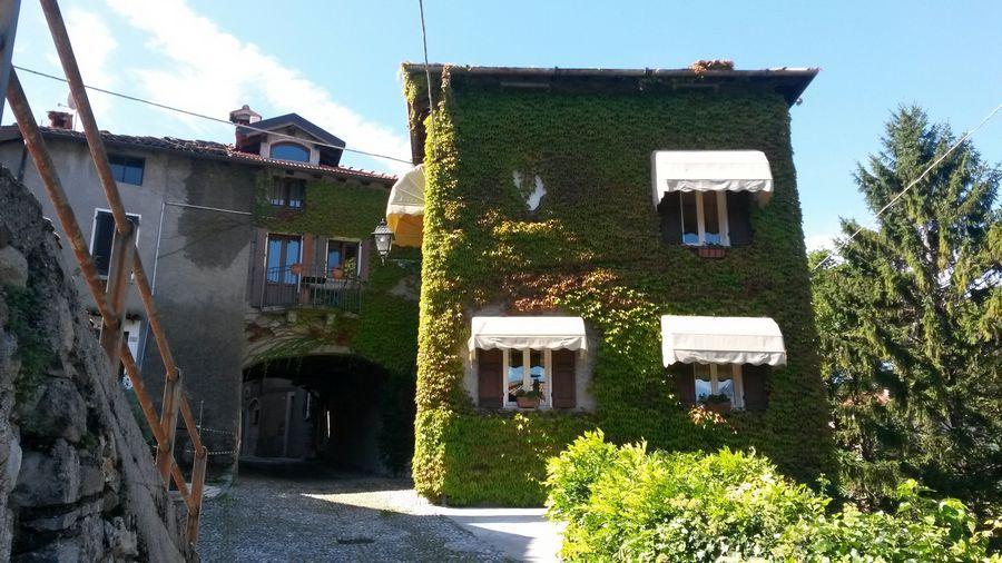 A leaf-covered house in Menaggio