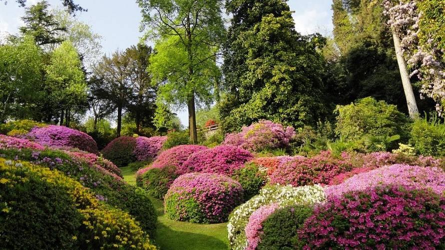 Villa Carlotta's botanical gardens