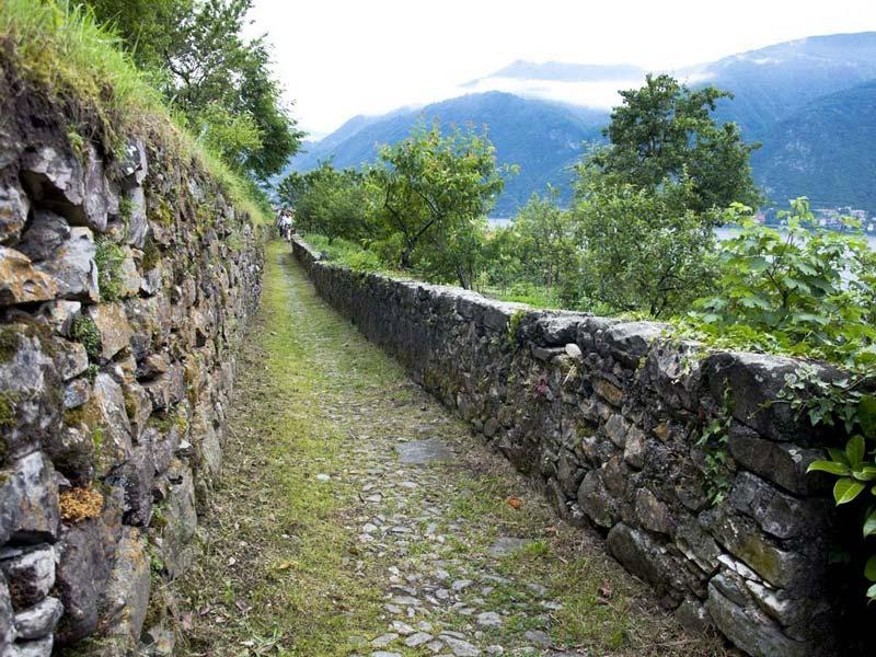 Strada Regia, Nesso