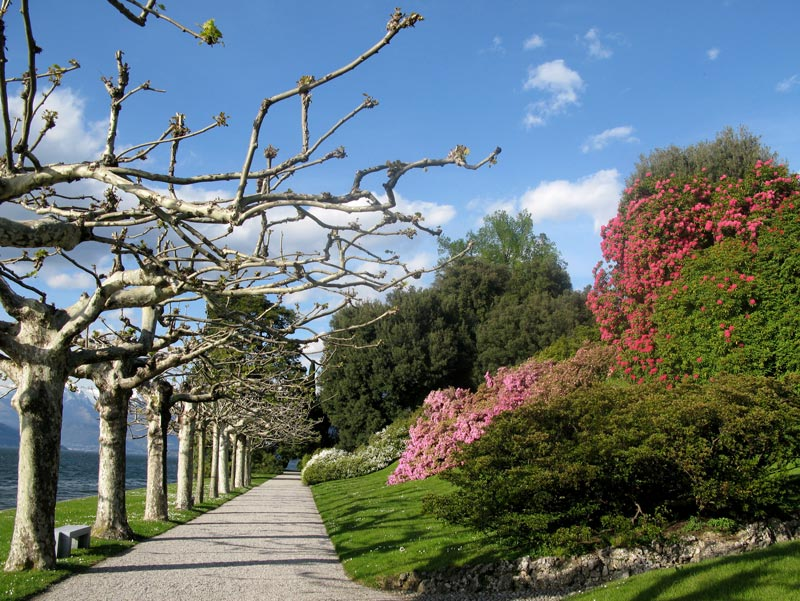 Villa Melzi gardens path, Bellagio