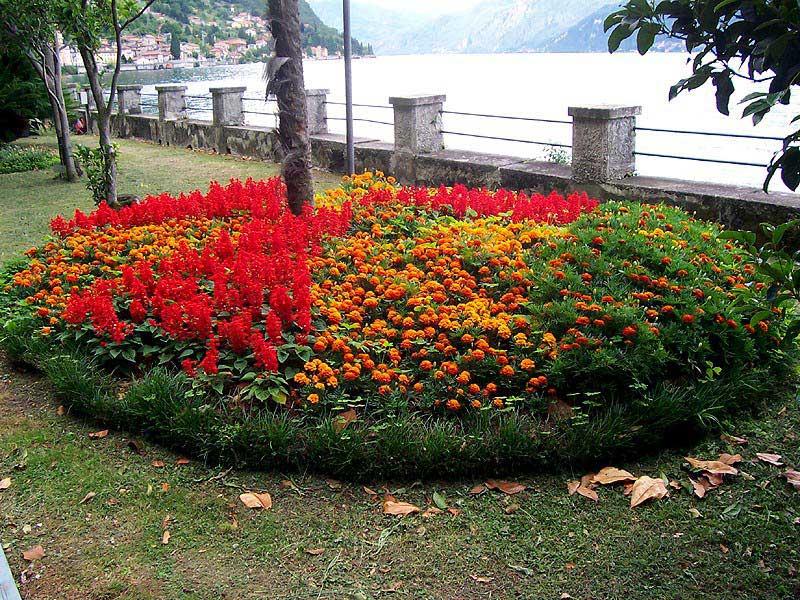 The gardens of Villa Monastero