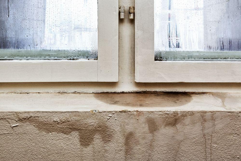 Trattamento per muri umidi