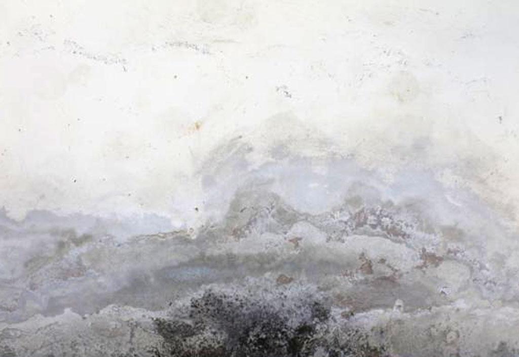 cartongesso contro umidità
