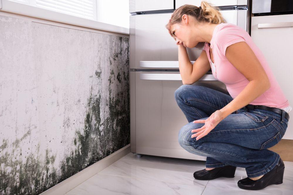 Risanare muri dall'umidità di risalita