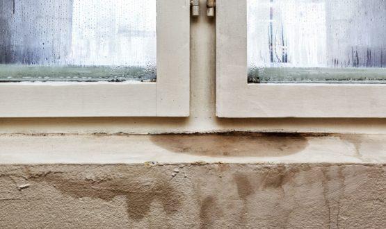 Come togliere l'umidità dai muri di casa