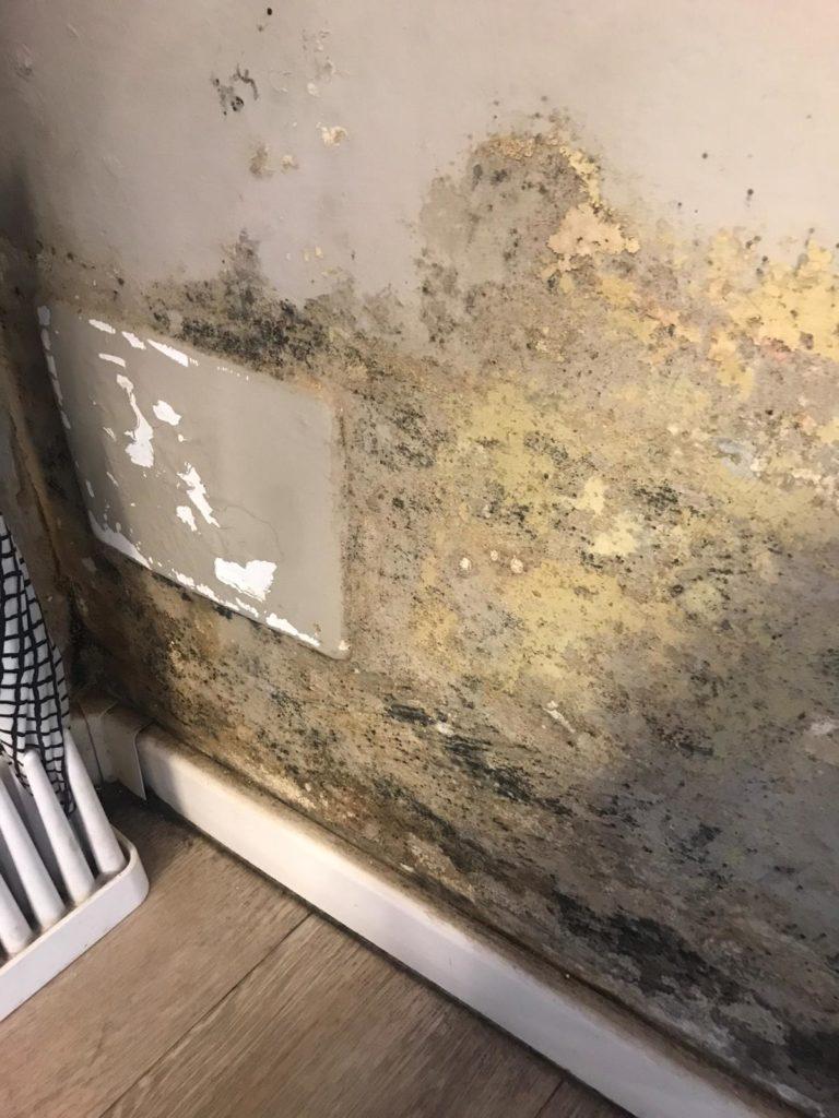 Muro Bagnato Cosa Fare umidità di risalita, la soluzione definitiva di murprotec