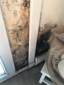 Umidità di risalita, la soluzione definitiva di Murprotec
