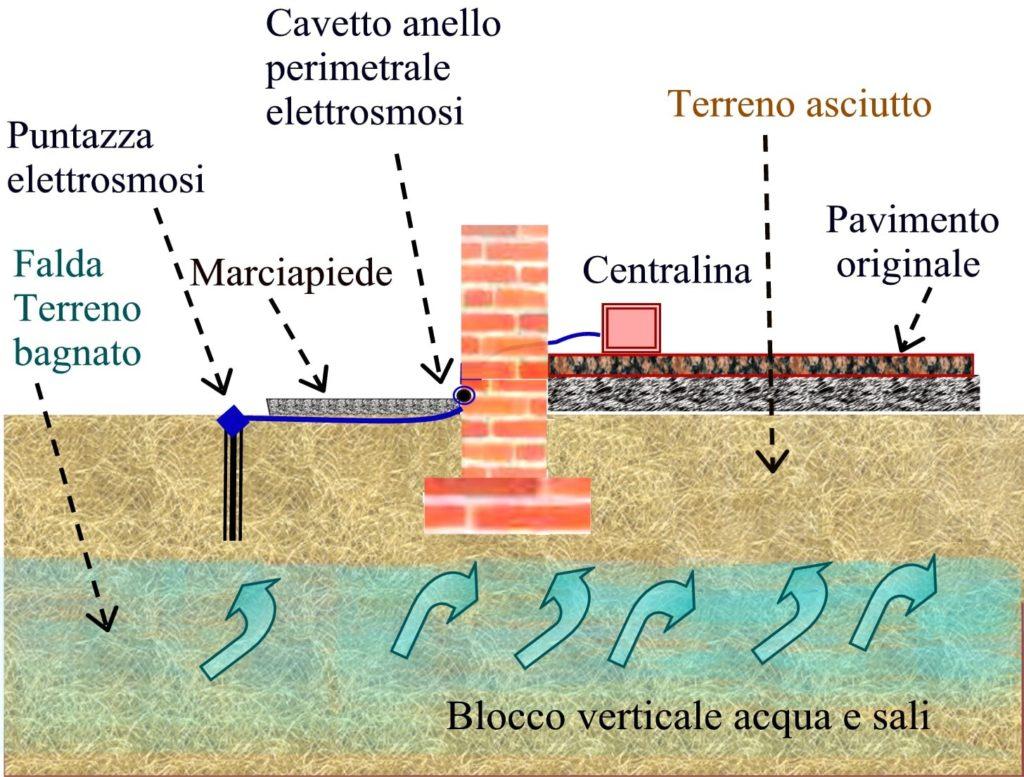 processo di elettrosmosi