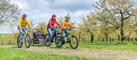 Familie fährt mit dem Fahrrad durch eine Frühlingslandschaft