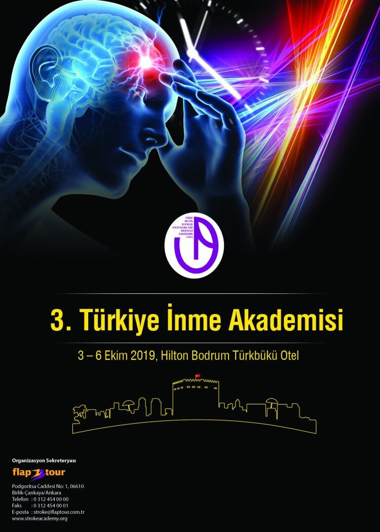 3. Türkiye İnme Akademisi
