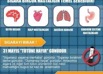 Türk Beyin Damar Hastalıkları Derneği Başkanı Prof. Dr. M. Akif Topçuoğlu 31 Mayıs Dünya Sigaraya Hayır Günü Nedeniyle Açıklamalarda Bulundu.