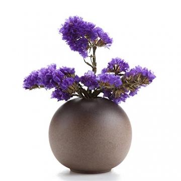 T4U Stile Antico Set di Vaso in Ceramica Decorazioni per la Casa Regalo Ideale per la Cerimonia Nuziale Vaso da Piante Idroponiche Vasi di Fiori Pacchetto di 3 - 2