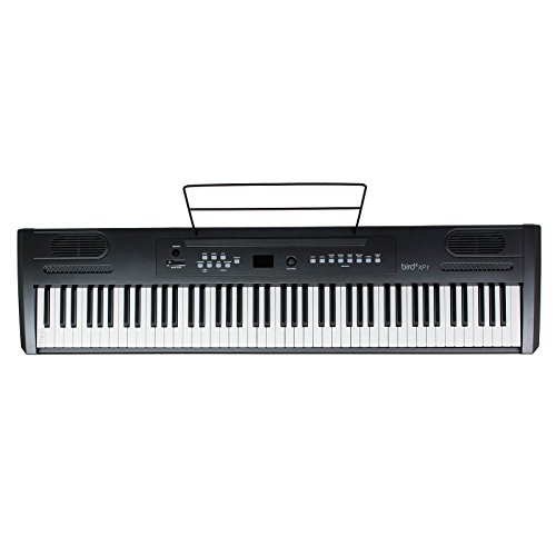 Bird XP1 Piano digitale, portatile, colore: Nero - 1