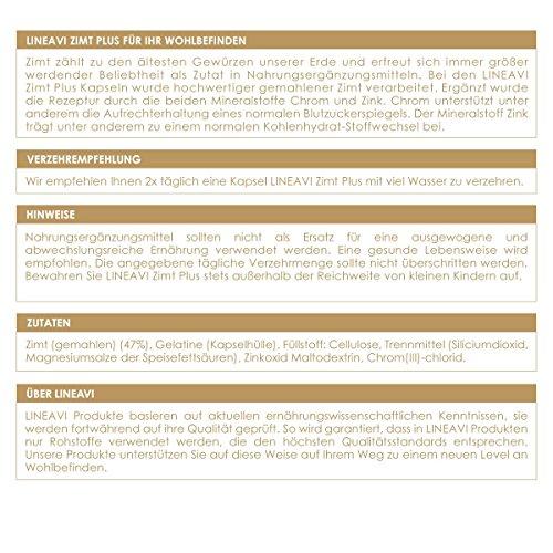 Cannella Plus LINEAVI | 400 mg di cannella, 7 mg di zinco, 100 µg di cromo al giorno | livello di glicemia, metabolismo, perdita di peso, pelle, capelli | made in Germany | 180 capsule (per 3 mesi) - 1