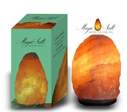 MAGIC SALT LIGHTING FOR YOUR SOUL Lampada di Sale dell Himalaya (4-6 kg Scatola cerigraphed) - 1