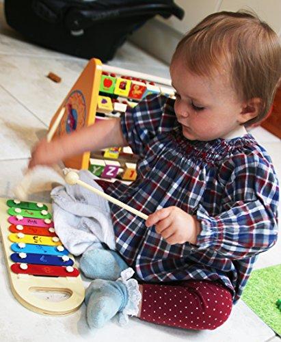 Toys of Wood Oxford Giocattolo Musicale Hammer And Balls - xilofono Giocattolo in Legno - Giocattolo da banco Musicale per Bambini - 1