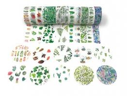 Washi tape set regalo a tema dettagliate stampe con gli adesivi Plant cactus - 1