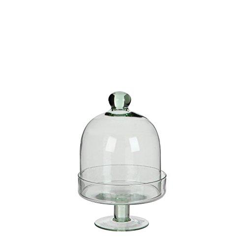 MICA Decorations 147023 campana, Diny, trasparente - 1