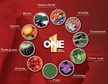NUTRI 1 ONE One Concime concentrato per Piante e Fiori, 1 lt - 3