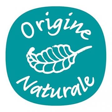 NUTRI 1 ONE One Concime concentrato per Piante e Fiori, 1 lt - 5