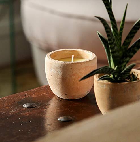 St Eval - candela profumata alla citronella, ciotola Toscana, repellente naturale anti-zanzare - 1