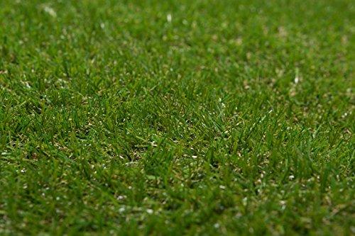 XONE Prato Canadese Sintetico Top Quality 25 mm H2x10mt Tot 20m2 | Erba Giardino Artificiale | Tappeto Verde Erba | Manto Prato Sintetico 25mm - 1