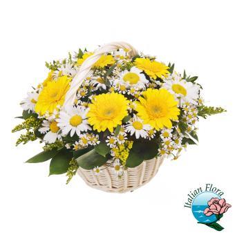 Cestino di fiori misti gialli e bianchi composto da Gerbere e Margherite - Consegna in Italia.