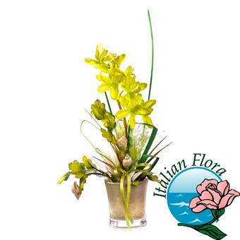 Consegna Pianta di Orchidea gialla - Consegna in Italia.
