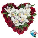 Cuore di Rose e Orchidee - Consegna in Italia.