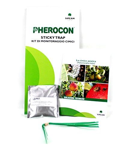 Gogoverde Trappola adesiva a feromoni per cimici Pherocon Sticky Trap - 1