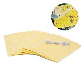 Plai 30 Fogli MoscheTrappola(giallo 20 x 25 cm), Trappola Bi-adesiva per Insetti, Mosca Bianca , Mosca della Frutta , Afidi, Minatori Fogliari, Cicaline - 1