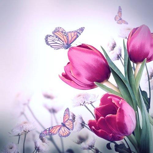 Tovaglioli per decoupage,a 3 strati, 33x 33cm, motivo farfalla e tulipani, per lavoretti e arte con tovaglioli, 4 pz. - 1