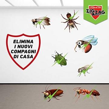 Zig Zag, Spaziotempo, Insetticida Multinsetto Spray per insetti striscianti e volanti, agisce istantaneamente, formato 500 ml - 5