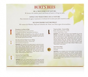 Burt Bees Burt labbra naturale a punte kit - 2
